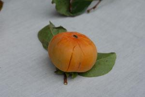 落ちてひびが入った柿の実