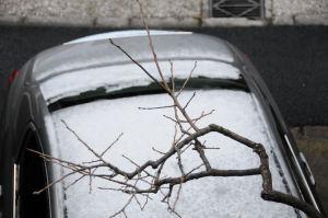 車の屋根には雪が残っています
