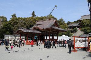 鎌倉八幡宮境内