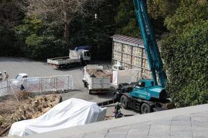 枝が払われトラックに積まれています