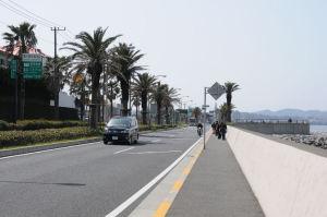 馬堀海岸沿いの遊歩道