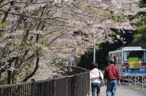 京急の路線バスが通り過ぎていきます