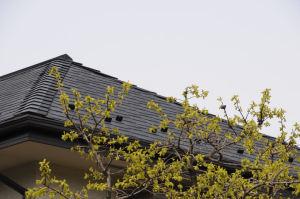 2階の屋根に被害
