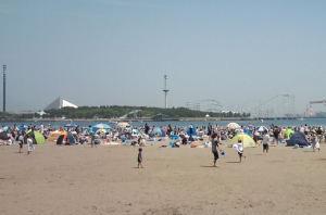 海の公園、大勢の人です