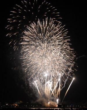 09年「海の公園花火大会」