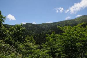 木々の間からは至仏山が見えてきました