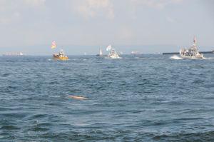随行船の波で小舟がひっくり返りました