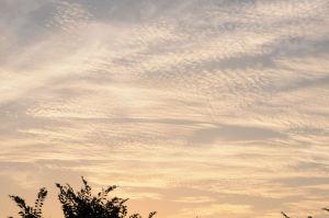 夕焼けの「いわし雲」