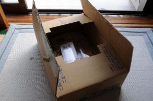 ダンボール箱に入って送られてきました