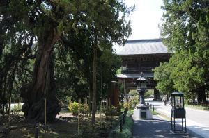 仏殿側からの山門