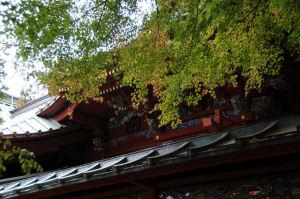 高尾山薬王院有喜寺の紅葉