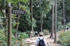 「高尾林道を経て大垂水峠方面」の標識