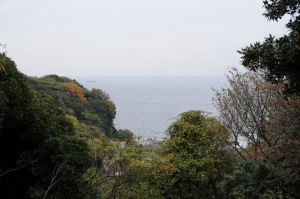 木々の間から見える東京湾