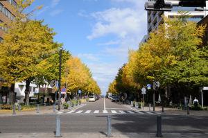 日本大通りを歩いてみました