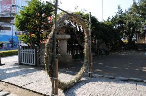 蛇混柏(じゃびゃくしん)金沢八木のひとつ