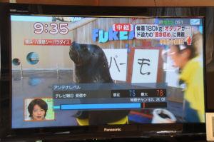 「テレビ朝日」アンテナレベル