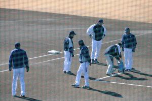野手のコーチ陣