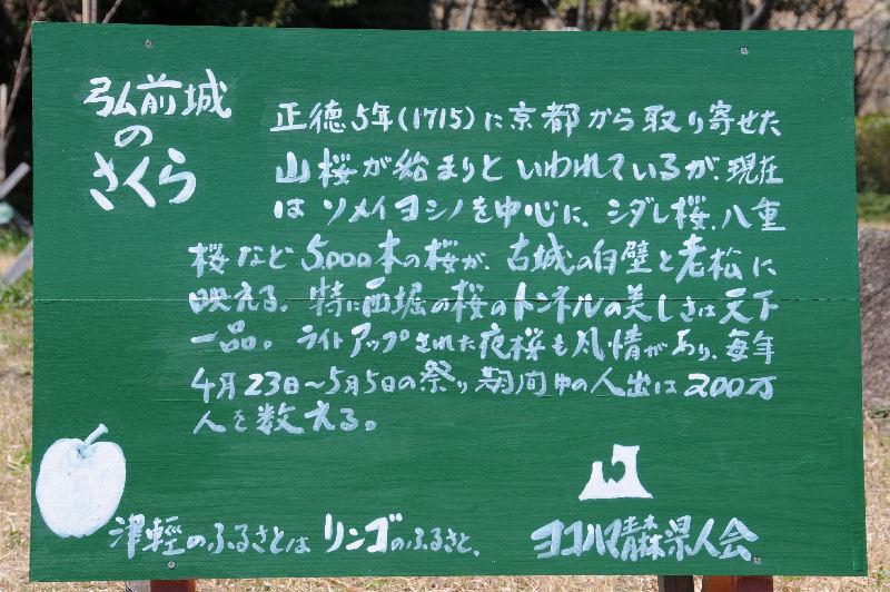 植樹された『弘前城のさくら』の案内