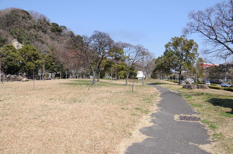 小柴崎緑道、北側