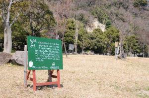 東北6県人会植樹のさくら