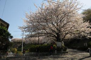 鷹取山の登り口