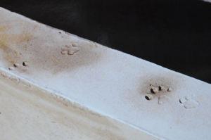 基礎コンクリについた足跡