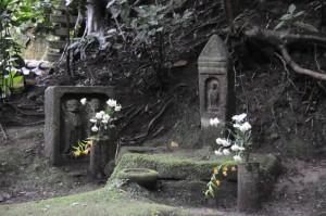 墓地を守っているようです