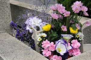 「紫の花」が多いですね