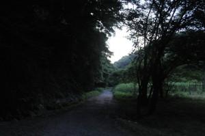川沿いは大分暗くなってきました