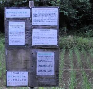 谷戸の水辺の掲示板