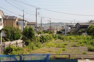 横須賀市の鷹取山がみえます