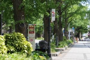 マリンタワー前のバス停