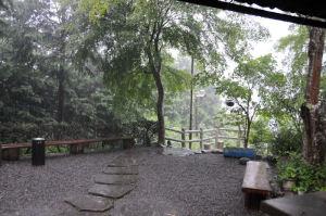 雷鳴がとどろき、見る見る間に大雨に