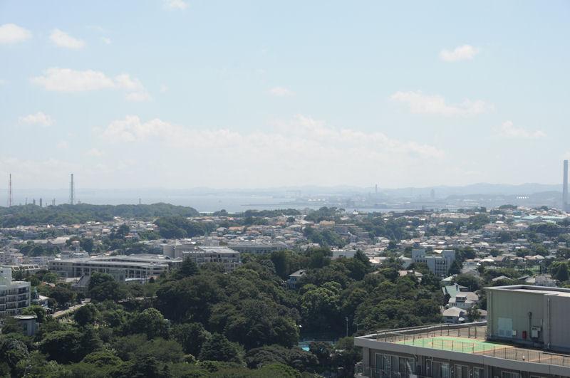 緑は元町公園