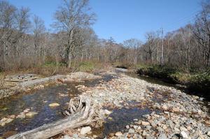 一級河川、川上川
