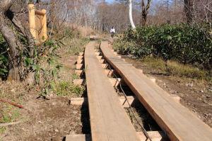 新しくなった木道