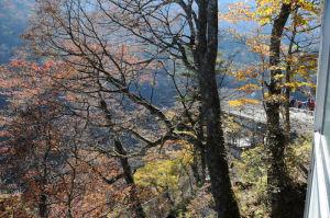上からの観瀑台