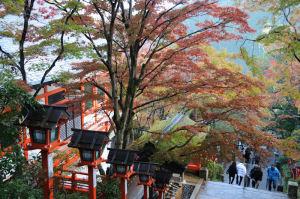振り返ると色鮮やかな紅葉が