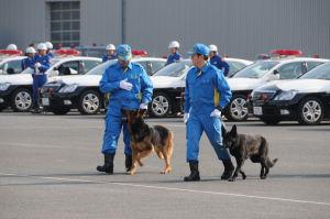 警察犬も参加します