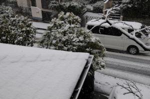 道路にも雪が積もってきました