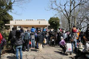 動物園の人気者