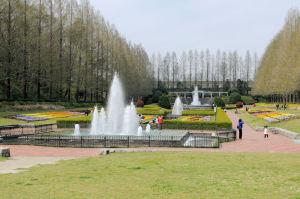 プチ外国の庭園のような風景が