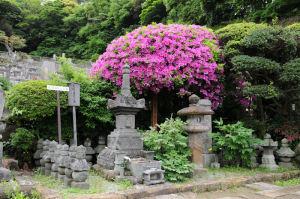 足利貞氏の墓所