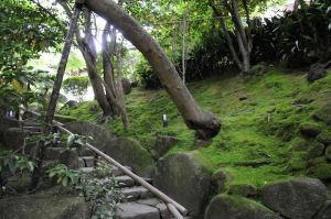 参道右側にある石段