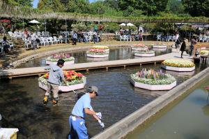 水上花壇の清掃