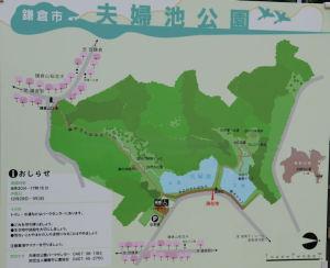 夫婦池公園案内図