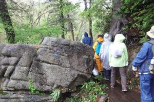 大きな岩があり