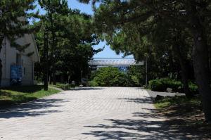 海の公園南口