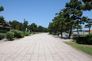 砂浜に沿って遊歩道