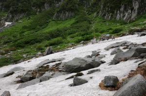 雪渓を回り下りていきます